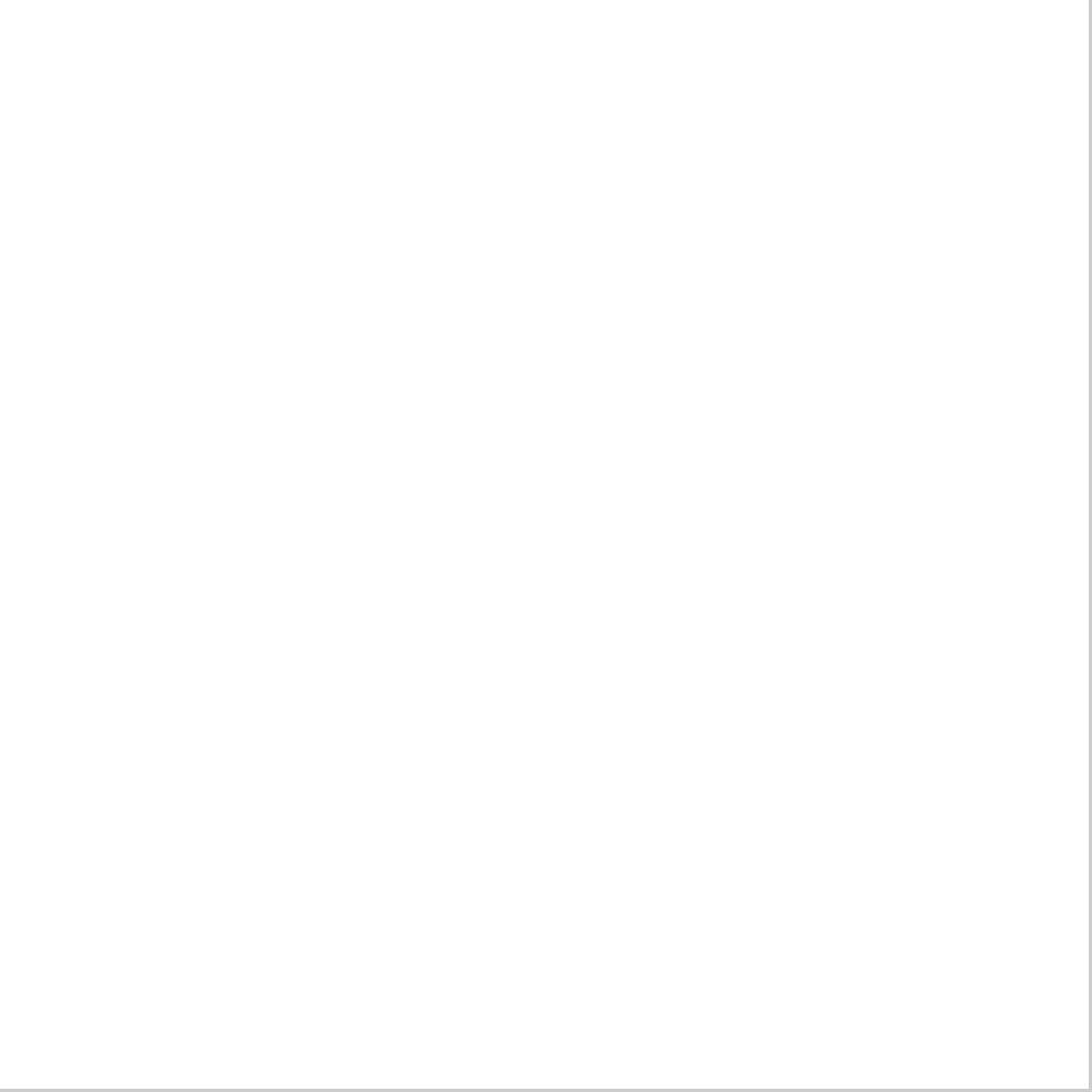 Liner armé blanc 150/100 ème - Rouleau de 2.05 x 25 m