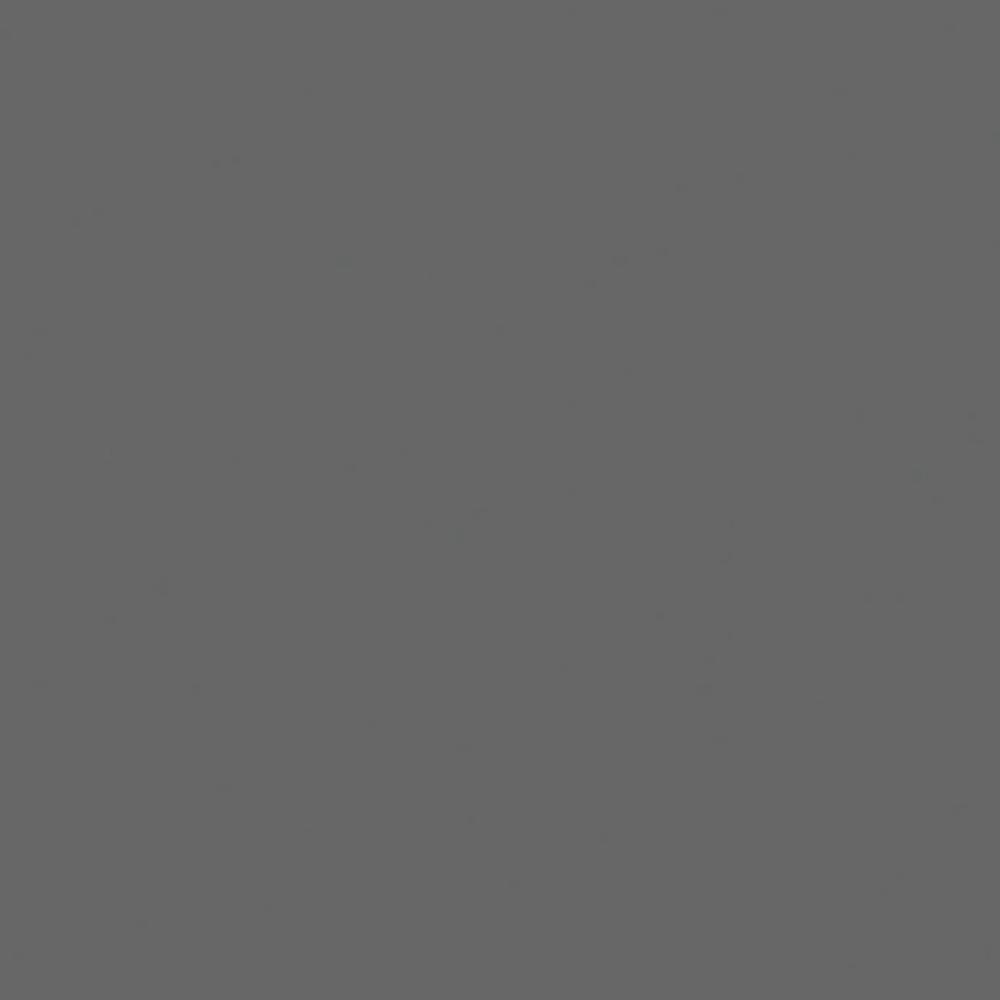 Liner armé gris foncé 150/100 ème - Rouleau de 2.05 x 25 m