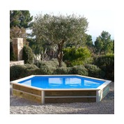 piscine bois waterclip