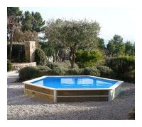 piscine bois hexagonale waterclip
