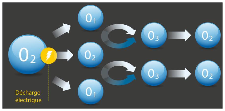 Electrolyseur Intex Krystal Clear Avec Ozonateur - schéma principe