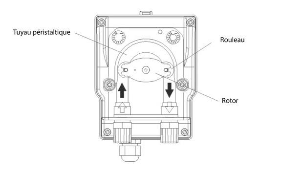 traitement de l'eau de piscine - pompe de dosage péristaltique - schéma explicatif