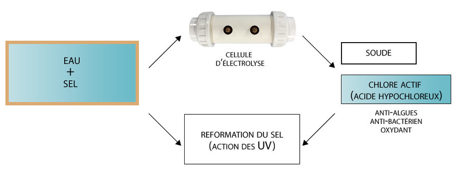 Perle - electrolyseur pour piscine - schema installation