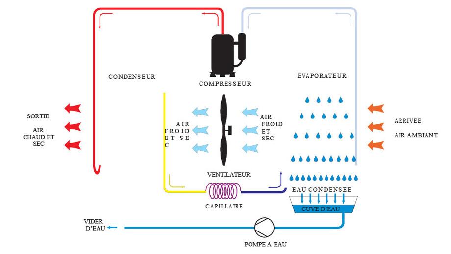 Déshumidificateur O'Clair vertical pour piscines jusqu'à 60 m²