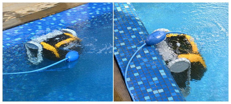 Détail du robot de nettoyage de piscine Dolphin E25