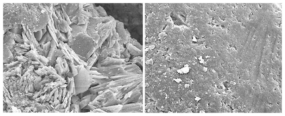 cellule microscopique de la zéolite kristalpool pour filtre de piscine