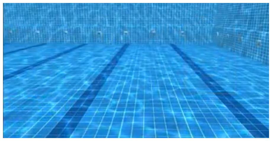 nettoyage du robot piscine prox 2