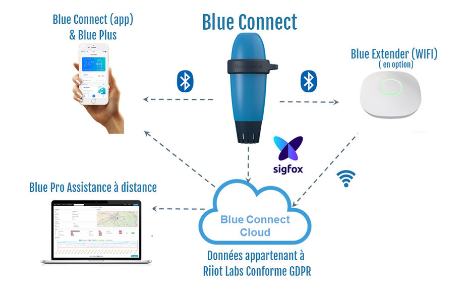 schéma de connection du blue connect plus