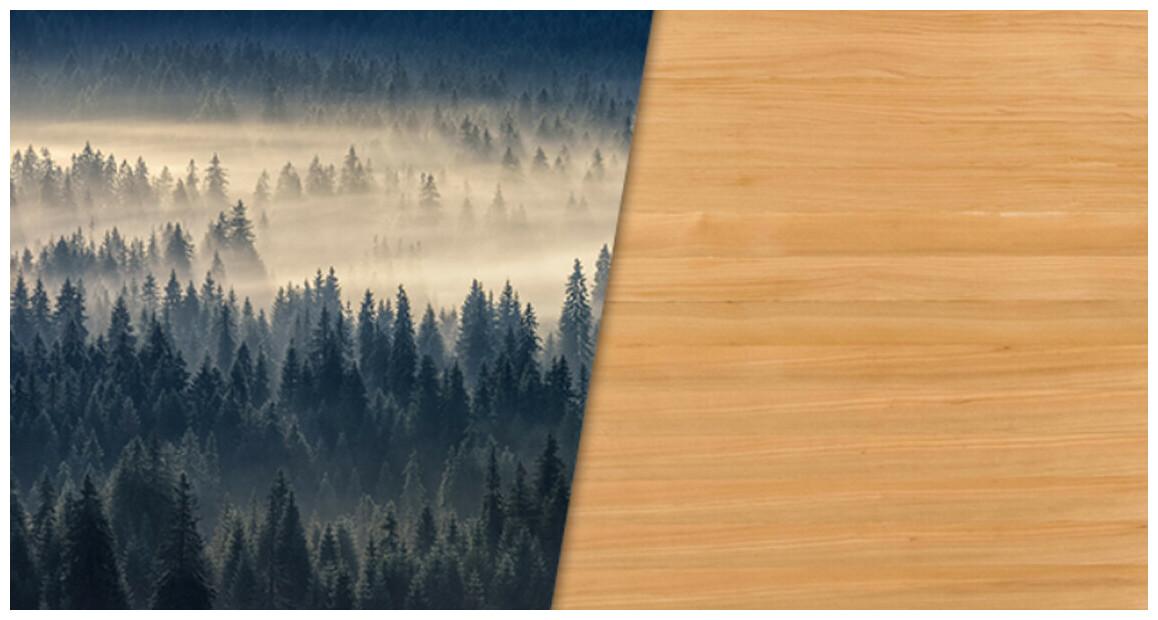 bois d'épicéa du sauna infrarouge apollon