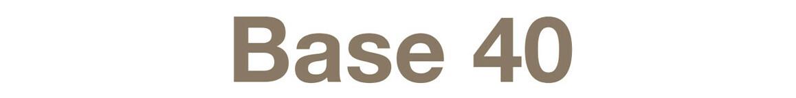 logo base 40