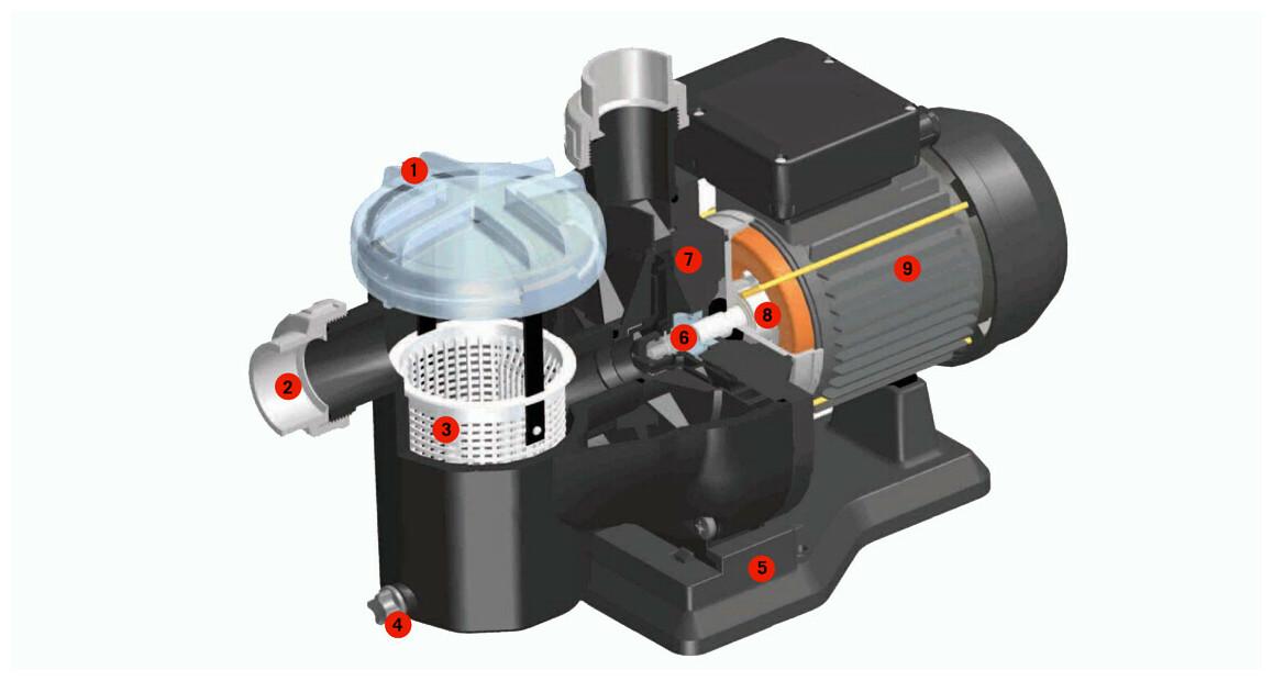 schéma descriptif de la pompe de filtration astralpool sena