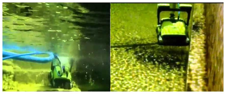 robot piscine naturel Dolphin Bio