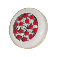 Lampe piscine avec 15 Super LED Rouge de 1W