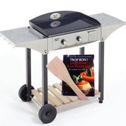 Desserte CHPS inox/bois pour plancha Roller Grill 600