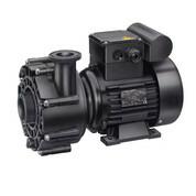 Pompe de filtration Speck 18 m3/h
