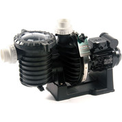 Pompe Sta-Rite 1.50 cv mono eau salée - 5p6r