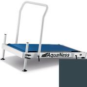 Tapis de marche aquatique Aquaness T1 gris ardoise